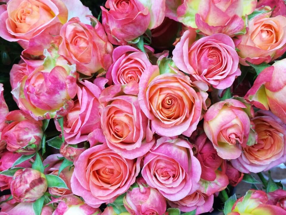 花のある暮らし Vol.1