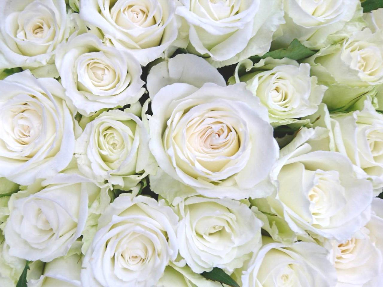 花のある暮らし Vol.7